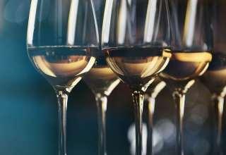 Glasses of Pinot Grigio