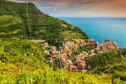 Terraced vineyards in Liguria
