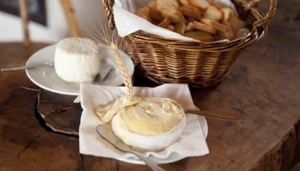 Azeitão cheese